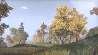 Сиродил (Online) — Руины Туманного озера