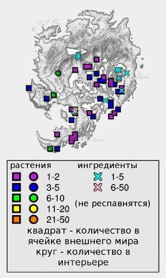 Стручок водного корня (количество)