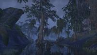 Шедоуфен (Online) — Ночь на болоте
