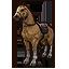 Palomino Horse Лошадь паломино иконка