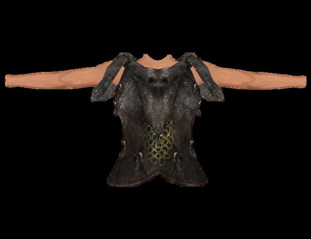 File:Savior's Hide (Oblivion) Female.png