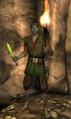 Дротмер-солдат