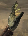 Argonian Hand.png