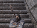 General Godrun