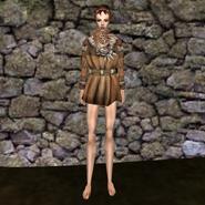 Дорогая рубашка (Morrowind) 3 жен