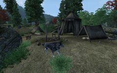 Лагерь Ра'савы