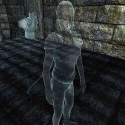 Призрак Вайтарна - Лучница