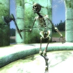 Скелет Обливион