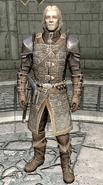 Agmaer Dawnguard Armor
