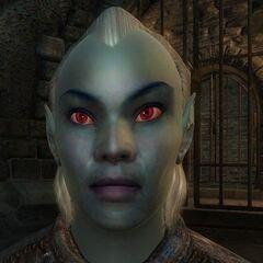 Dunmer z gry The Elder Scrolls IV: Oblivion