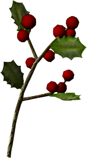 File:Snowberries.png