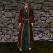 Дорогая мантия 4 (Morrowind) муж