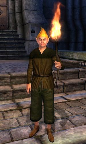 Adoring Fan (Oblivion) | Elder Scrolls | FANDOM powered by Wikia