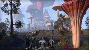 ESO-Morrowind-Mushrooms 1485885029