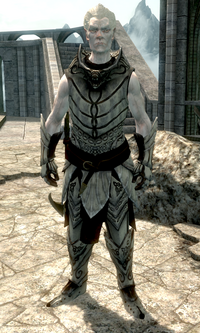 Snow Elf | Elder Scrolls | FANDOM powered by Wikia