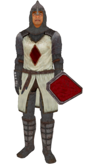 KnightsoftheNineArmor