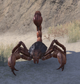 Thieves Guild Scorpion.png