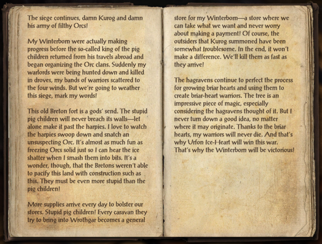 File:Ice-Heart's Journal.png