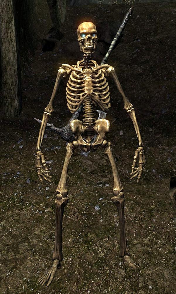 Skeleton Skyrim Elder Scrolls Fandom Powered By Wikia