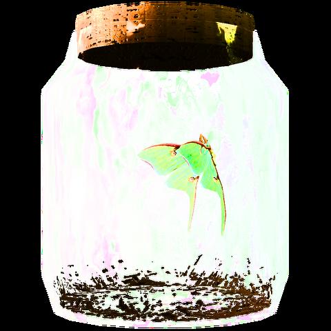 File:TESV Moth In A Jar Crop.png