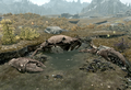 Giant Mudcrab.png