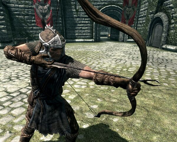 File:Solitude Stormcloak Guard.jpg
