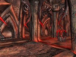 Architettura Lande Morte