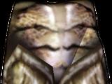 Хитиновые поножи (Morrowind)