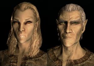 Elf wysokiego rodu (Skyrim)