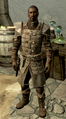 Florentius Dawnguard Armor.png