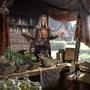 Handlarz z Shimmerene (Legends)