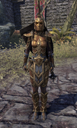 Ordinator Guard