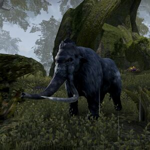Древесный мамонт (Online)