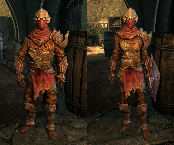 File:Chitin Armor - Both.png