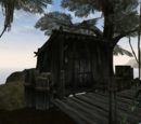 Abandoned Shack (Morrowind)