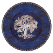 Chorrol Shield