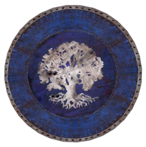File:Chorrol Shield.png