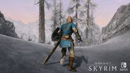 SkyrimSwitch Outfit