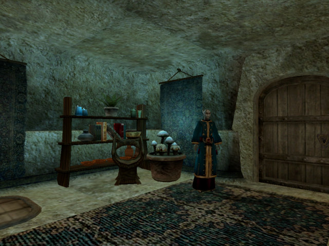 File:Telvanni Canton, The Mage Morrowind.png