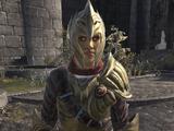 Thalmor Soldier (Blades)