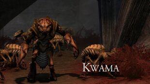 Квама (TESO)