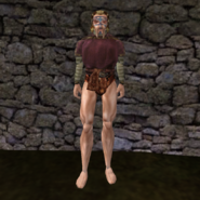 Простая рубашка (Morrowind) 14 (муж)
