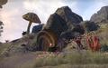 Dreloth Ancestral Tomb (Online).png