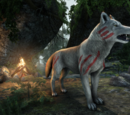 Karthwolf Shepherd