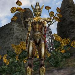 Золотая святоша (Morrowind)