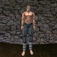 Простые штаны (Morrowind) 3 (муж)