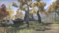 Сиродил (Online) — Затерянный Вейе