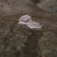 MW-creature-Scrib