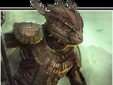 Argonian (Online)