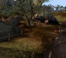 Zainab Camp (Morrowind)